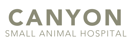 Welcome to Canyon Small Animal Hospital | Veterinary Care in Caldwell, ID